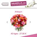 Aquarelle permet d'envoyer des fleurs depuis son iPhone