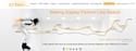 Display : les 'cliqueurs' de bannières achètent trois fois plus que les internautes