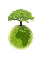 Greenweez.com, le business rentable de l'écolo-bio-bien-être