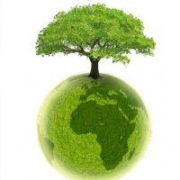 Greenweez.com lève 3 millions d'euros