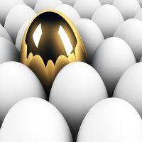 Yahoo! : décryptage d'une mue prometteuse