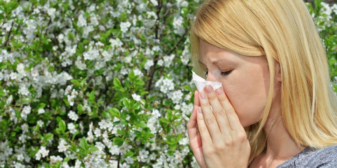 Amazon lance une boutique en ligne pour les personnes souffrant d'allergies