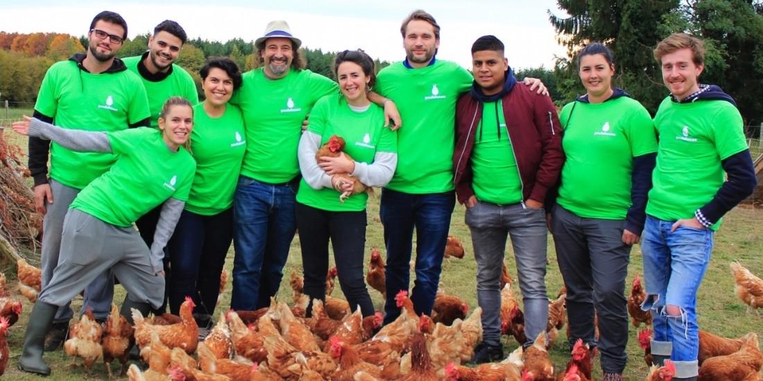 Poulehouse lève 3,5 millions d'euros pour une production d'oeufs responsable