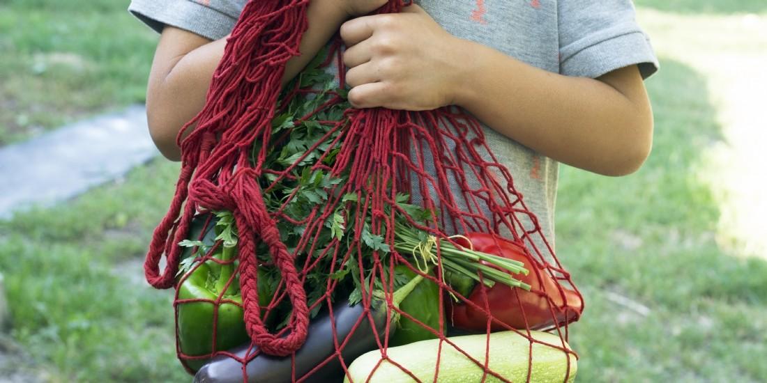 Quelles tendances pour le marché des produits alimentaires bio ?